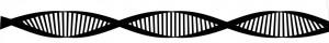 FCS DNA